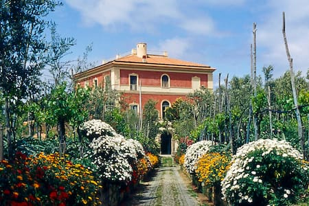 Villa Parisi (XIX  cen.) - Sorrento - Sorrent - Bed & Breakfast
