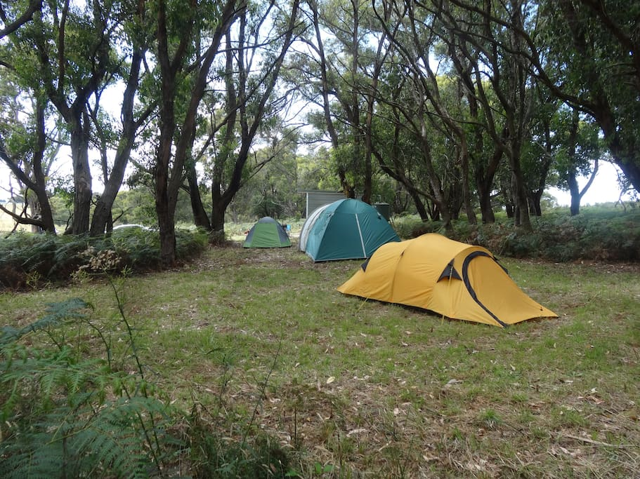 Our Camp Site area...