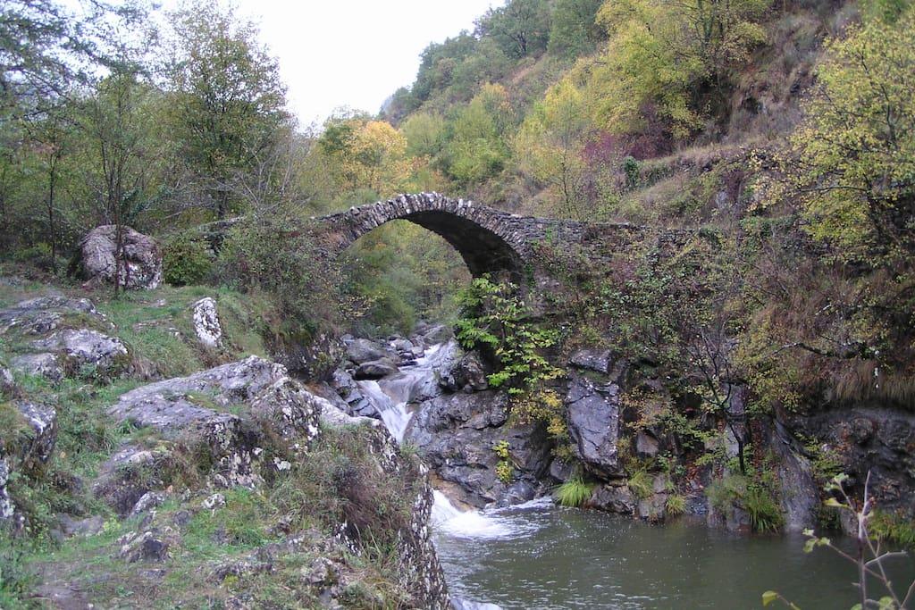 Der Fluss Giara