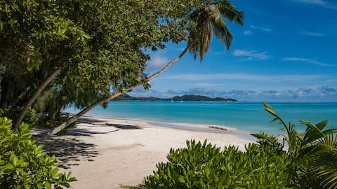 Directly on the Beach 3 - Cote D'or - Praslin