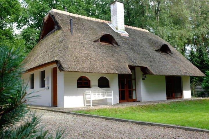 Maison de vacances spacieuse avec toit de chaume à Uelsen
