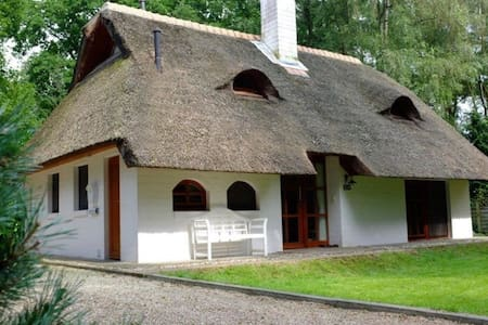 Geräumiges Ferienhaus mit Reetdach in Uelsen