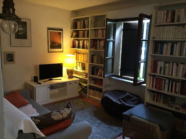 Canapé-lit couchage 140, alcôve avec lit 1 place, Écran plat . Wifi. Bibliothèque