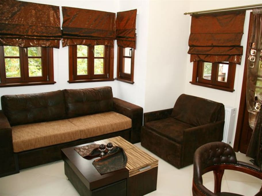living room with double sofa bed and a single armchair  bed .