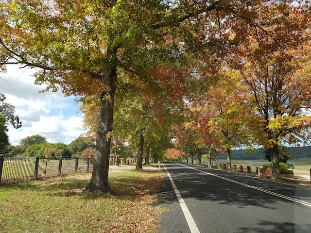 Tenterfield-Boutique Luxury Accommodation
