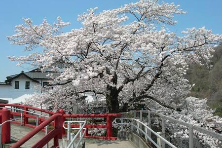 Beautiful tourist attraction area. - Midori - 獨棟