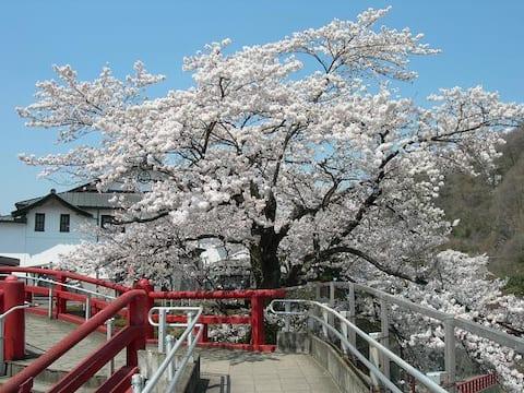 Beautiful tourist attraction area.