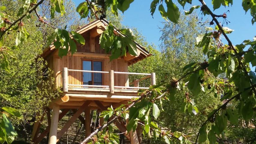 La quiete casa sull 39 albero ai castagni treehouses for - Airbnb casa sull albero ...