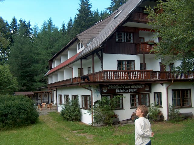 Haus Waldhotel, free August 14-22 - Lenzkirch