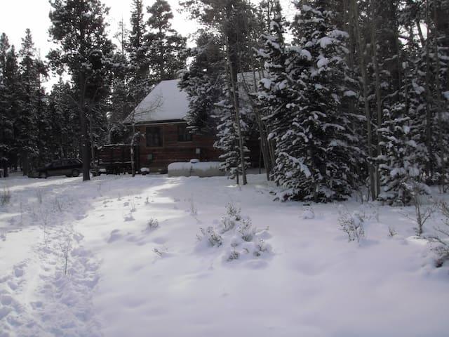 Amazing Cabin Hot tub Fireplace - Fairplay - Cabaña
