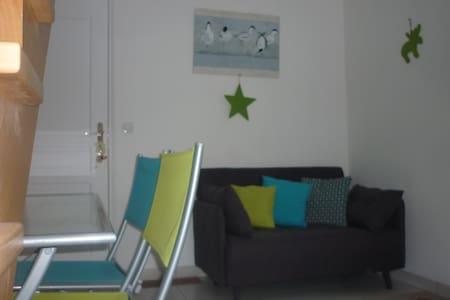 Studio duplex neuf avec terrasse  - Plescop