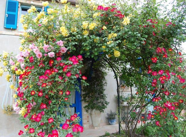 romantico B&B nelle Marche Aurora - Monterubbiano - 家庭式旅館