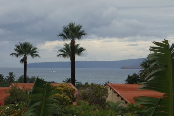 Maui Hill 1 Bedroom Best Ocean View #38