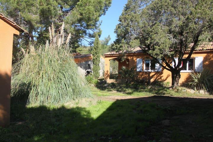 Mini-Villa 60 m2  Olmeto /propriano