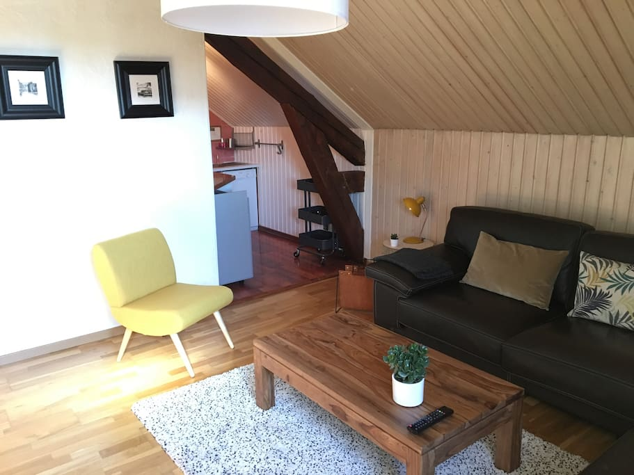 Appartement cosy plein centre appartements louer for Chambre a louer annecy