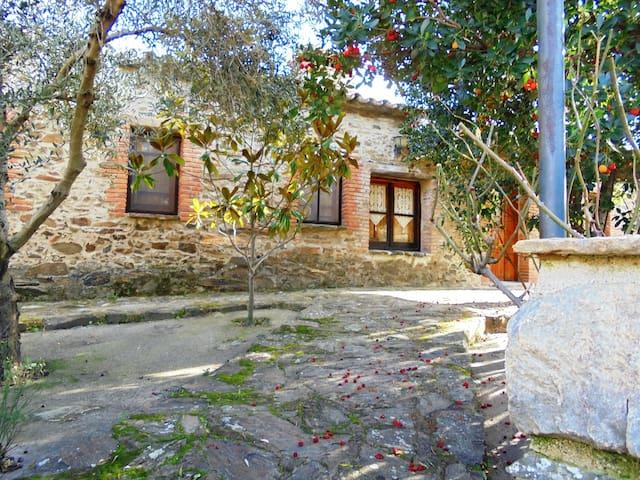 Casa Rural Jiniebro  para 7 plazas - La Aceña de la Borrega - Dom