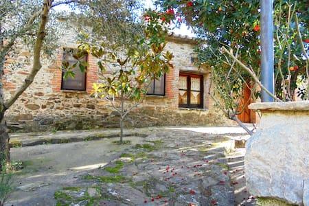 Casa Rural Jiniebro  para 7 plazas - La Aceña de la Borrega - บ้าน