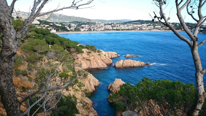 Spacious apartment close to centre town - Sant Feliu de Guixols  - Leilighet