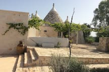 Trullo aromatic green