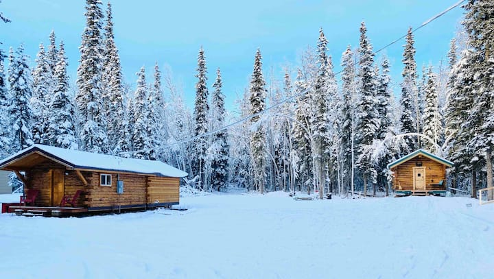 Wolf Den: Family Friendly Cabin in woods- dogs ok