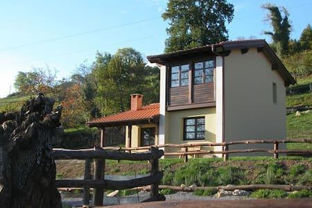 Casa rural    Coviella del Sidron