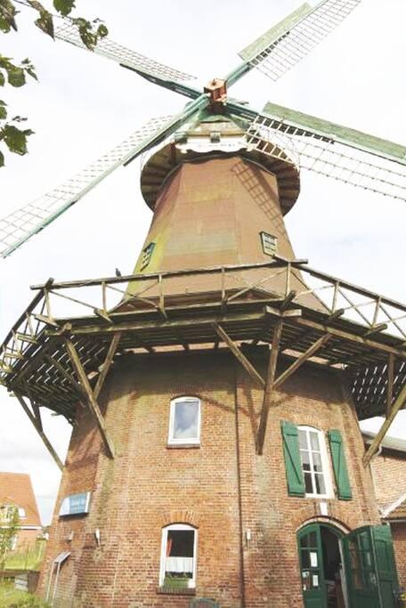 Mühle von Nahem
