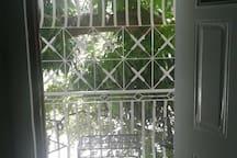 Balcony in the trees