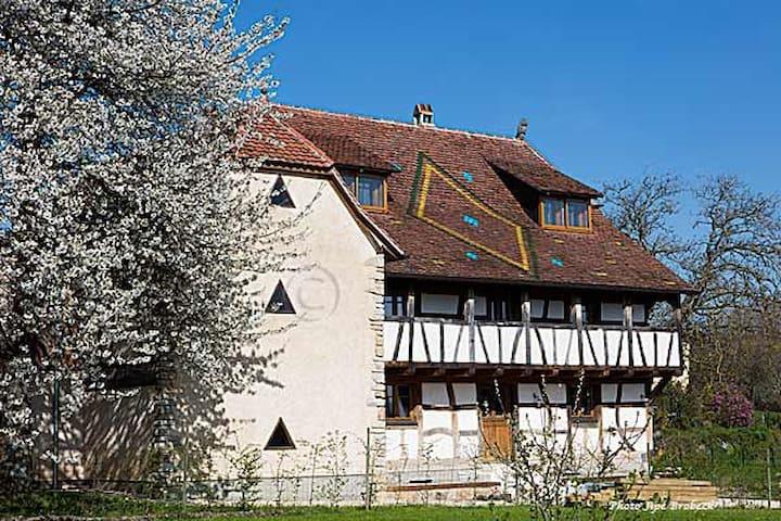Maison alsacienne traditionnelle Bim Rosa
