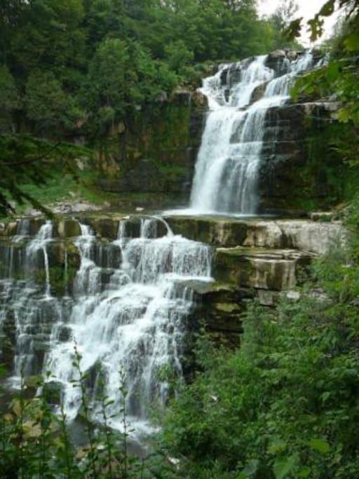 Chittenango Falls in front yard is only ~13 feet shorter than Niagara!