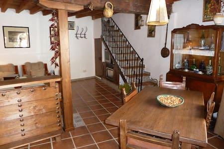 Charming house in Montes de Toledo - Marjaliza