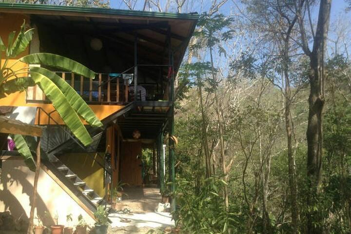 Jungle B&B: 1 room 2 single beds - Malpais