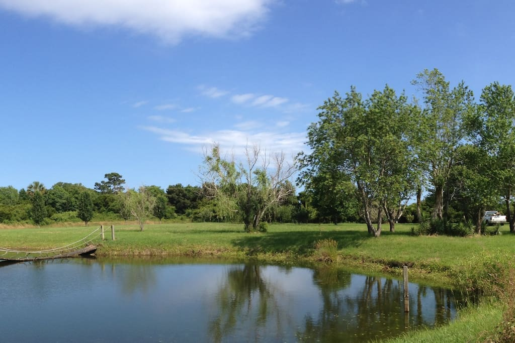 Breezy Egret Farmhouse Waterfront 3 Bedroom Houses For