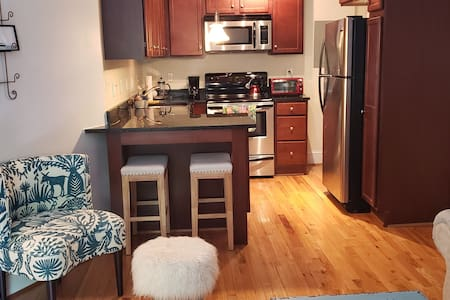 Entire One Bedroom Condo in the Museum District