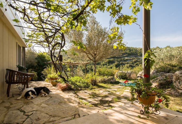 Charming villa infront of nature - Ein Hod - 別荘