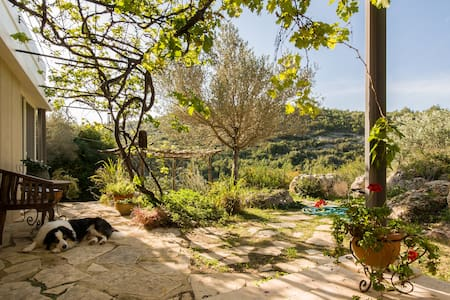 Charming villa infront of nature - Ein Hod