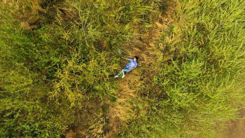 【独立院落疫情期特价】哈尔滨边原始状态林场&北京艺术家爆改民居|轻奢艺术体验|家庭亲子|网红直播打卡