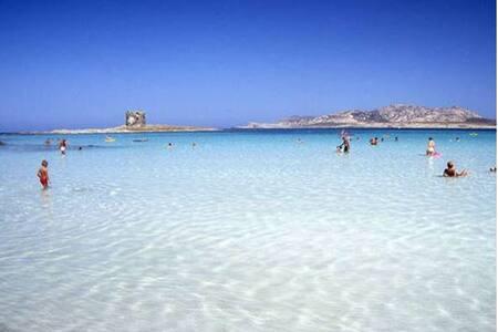 Sardegna, mare Stintino – monolocale 4 posti letto