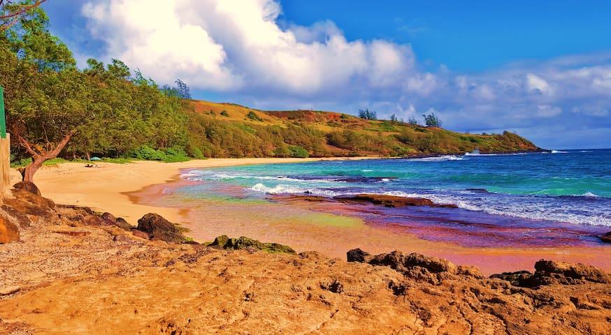 Plantation Style Beach Hale in Kaua'i - Kapaa - Condominium