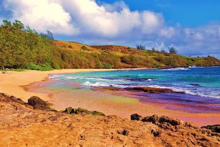 Plantation Style Beach Hale in Kaua'i - Kapaa