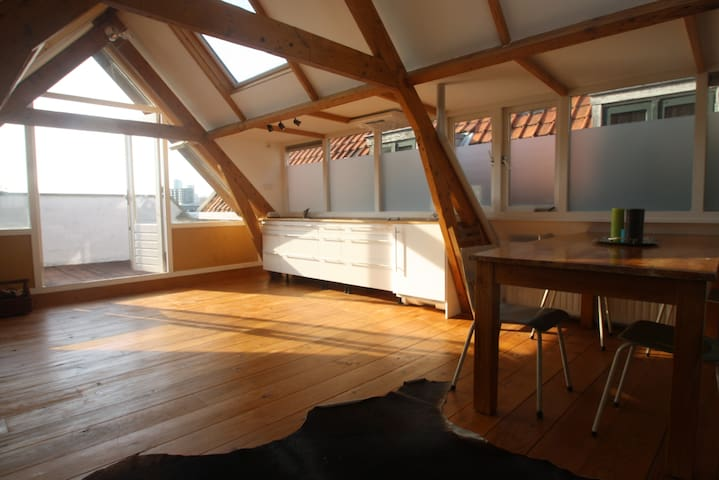 A Loft with a View - Rotterdam - Byt