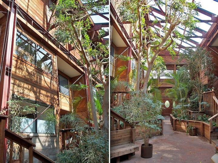 Modern Redwood Oasis in Rockridge