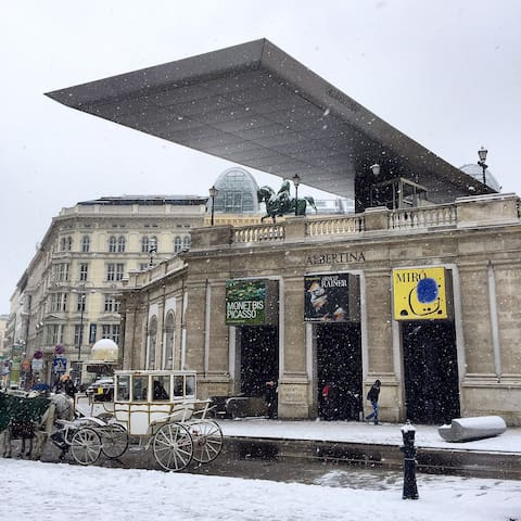 Albertina Museum, just next to the Opera. This is also where Vienna Tourist Office is located.