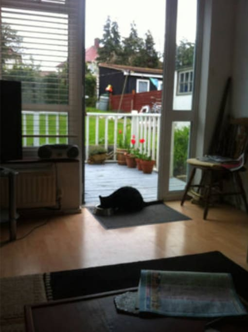 front room with garden decking