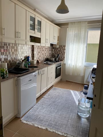 Petfriendly cost flat in İstanbul