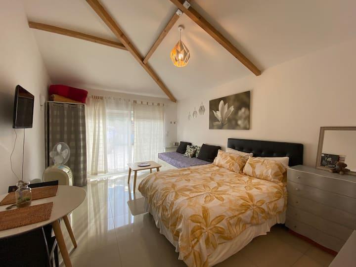 Grand studio accès privée, indépendant et terrasse
