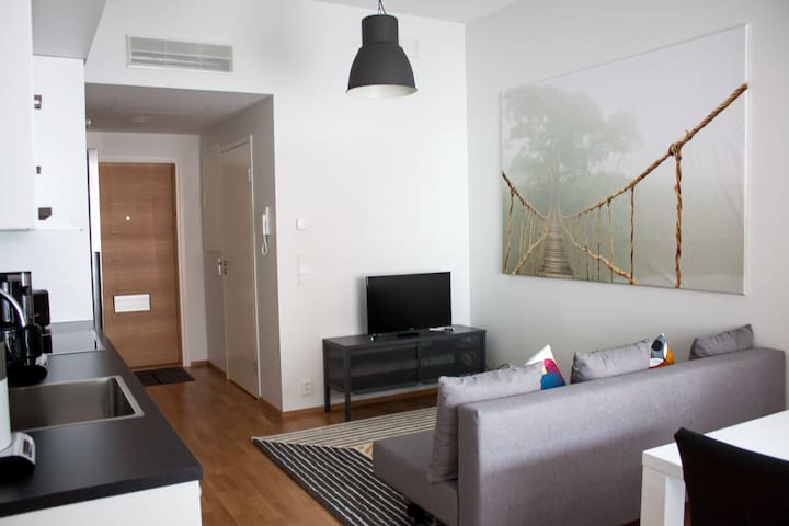 High Quality One Bedroom apartment