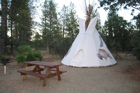 Beautiful 18' Buffalo TiPi (TP2)