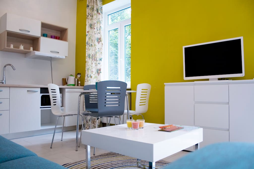 Flowers City Center Apartment Apartments For Rent In Zagreb City Of Zagreb Croatia