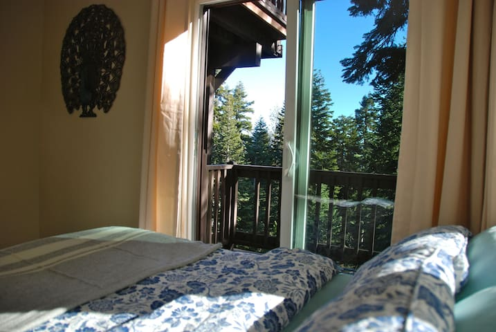 Double bed and sliding glass door to a forest-view deck from this downstairs bedroom.