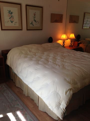 Master Bedroom with Private Bath  - Bonita Springs - Casa